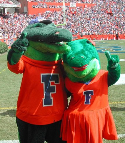 Team mascots for the University of Florida Gators are a pair of fun-loving orange alligators who go by the name of Albert and Alberta. Some schools continue to use caricatures of Native Americans while others have dismissed this practice but have retained nicknames that some find offensive.