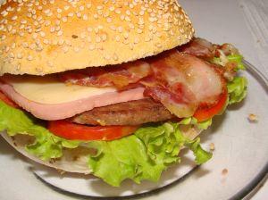 hamburger1.jpg