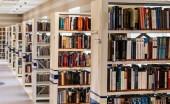 libraryscience