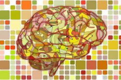 7 Amazing Tricks to Get More Out of Brain Health