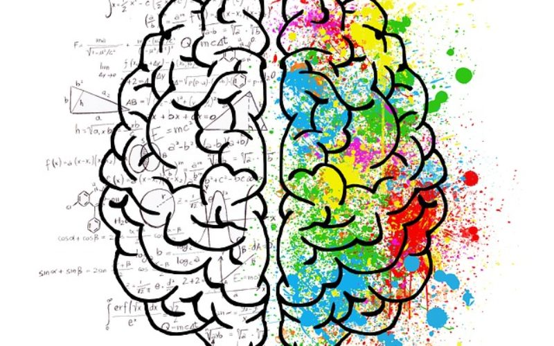 8 Simple Ways to Improve Your Brain Potential in College
