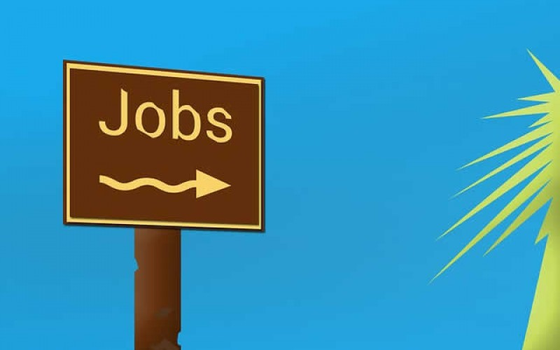 How to Jump Start Your First Job Search