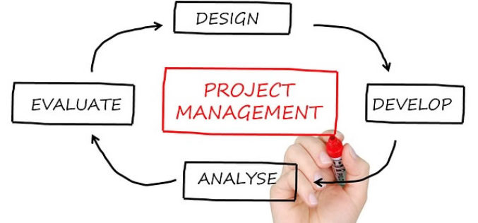 Career Profile: Project Manager