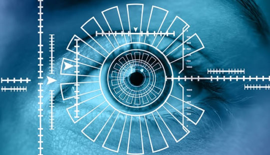 Career Profile: Information Security Analysts