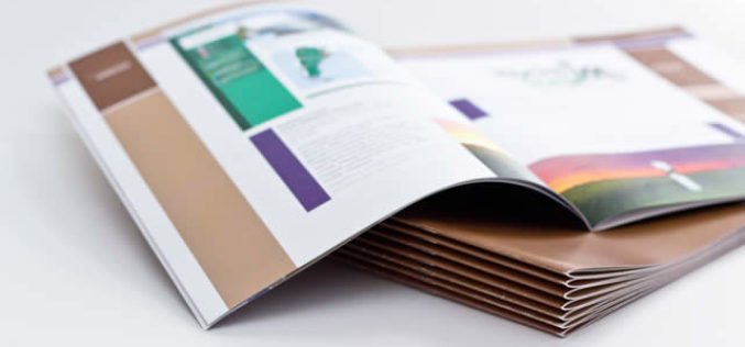 How to Create the Best School Brochures: A Guide with Templates