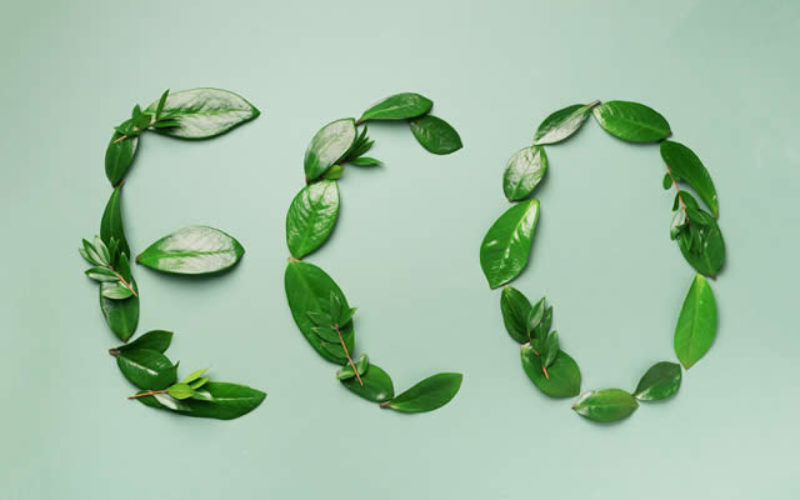 5 of the Best Sustainable Habits to Start Now