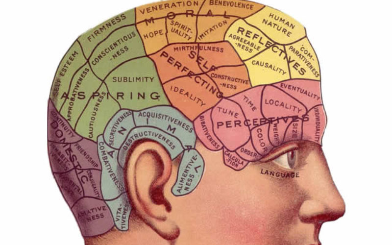Study Hacks – How College Students Can Improve Their Memory