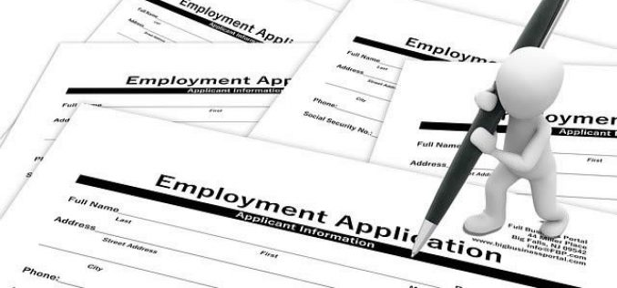 Job Hunting Tips for Graduating Seniors