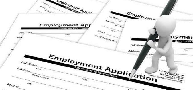 Job Hunting Tips for Graduating Seniors