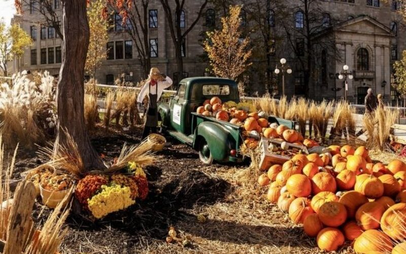Great Tips For Planning a School Fall Festival